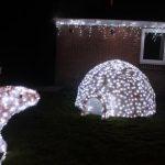 christmas dome lights