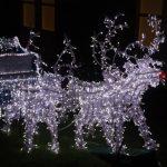 christmas lights outdoors